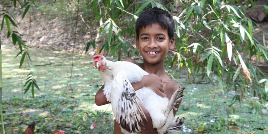 Scott Bader Commonwealth grant funds poultry toolkits for families in rural India